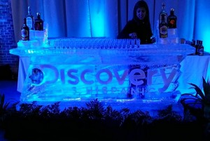 Discovery Ice Bar Chicago Sculpture Carving
